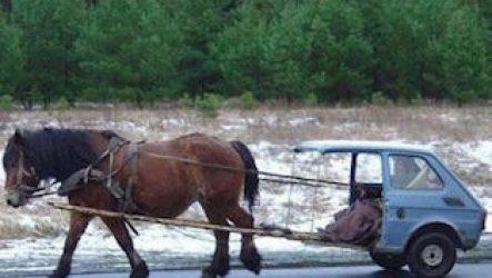 Одна лошадиная сила