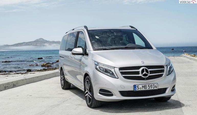 Mercedes Viano-543