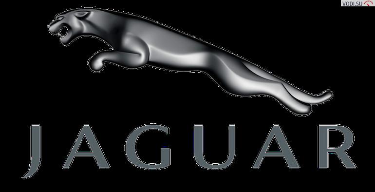 Jaguar553